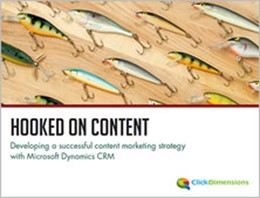 Hooked on Content eBook
